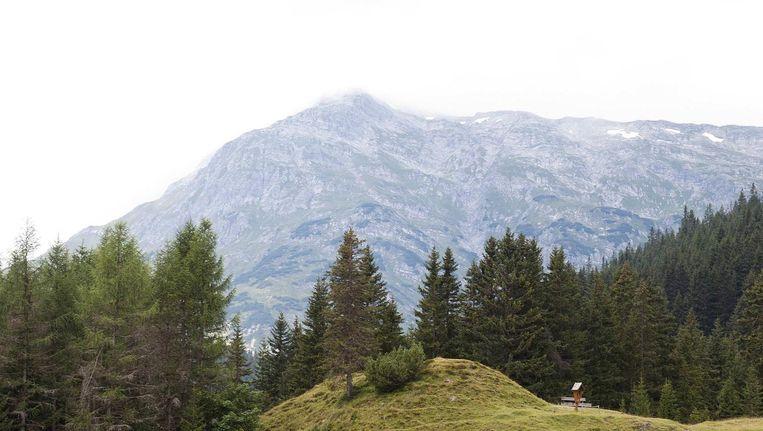 Het Oostenrijkse ski-oord Lech. Beeld anp