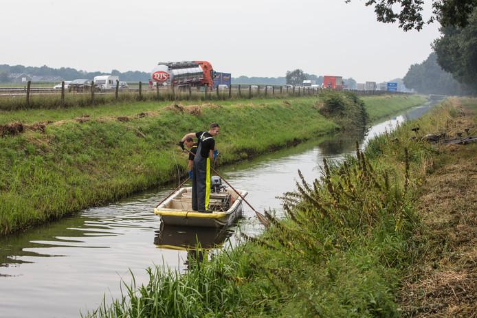 Onderzoek naar de visstand in de Astense Aa in Liessel