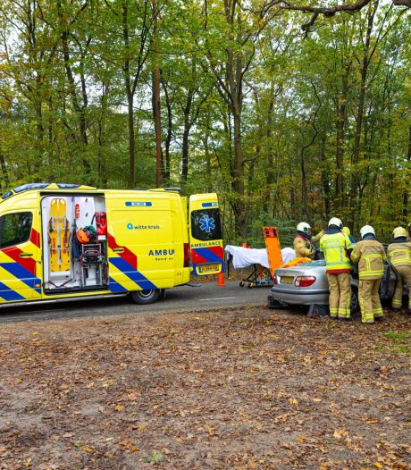 Automobilist onwel en botst tegen boom tussen Wapenveld en Wezep