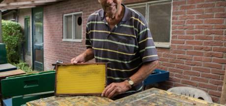 Gastdocenten in Overijssel gezocht die scholieren belang leren van bijtjes voor de bloemetjes