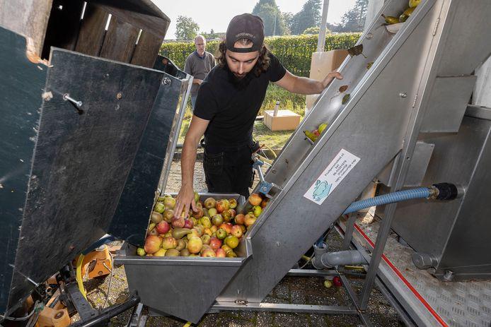 Op de Oirschotse sap-persdag kunnen mensen appels en peren brengen om te laten persen.