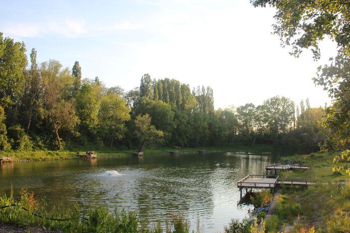 De visvijver aan het gemeentelijk domein Steenberg in Erpe-Mere.
