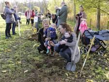 Baby'tjes uit gemeente Boxtel krijgen een geboorteboom in de omgeving van Liempde