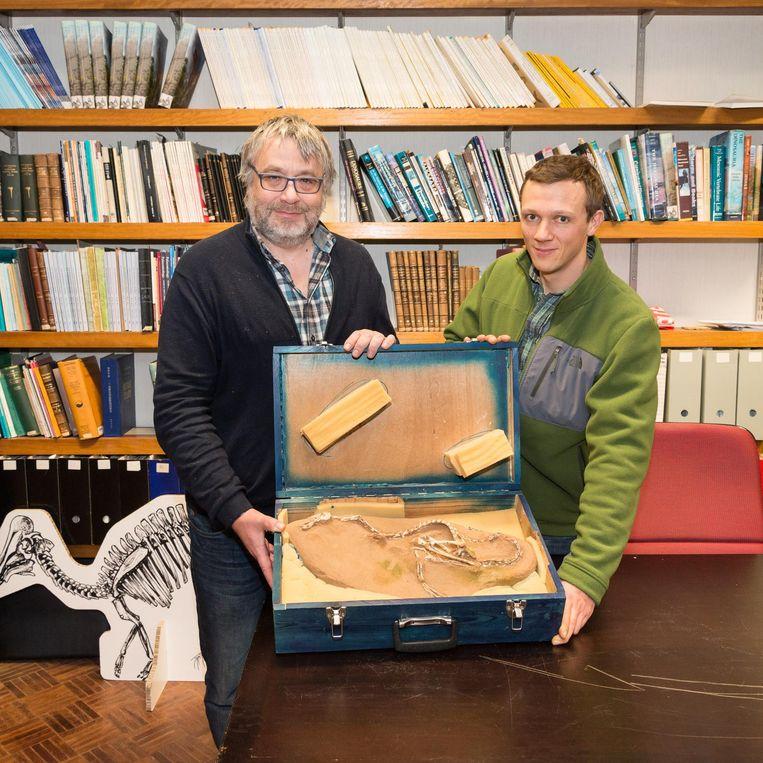 Koen Stein (r.) en zijn collega-wetenschapper Pascal Godefroit tonen het 75 miljoen jaar oude skelet.