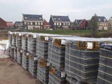 Hoef en Haag is drukker met klussen dan met stemmen