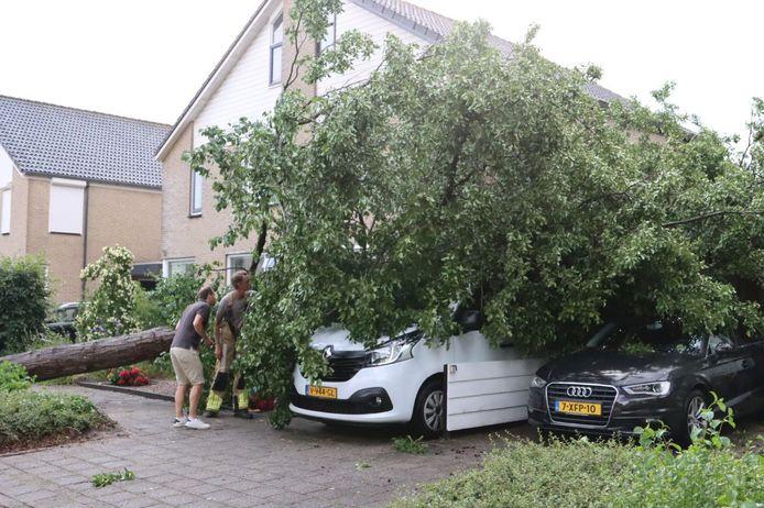 Aan de Marinus Postlaan in Kampen kwam een boom op een geparkeerde bus.