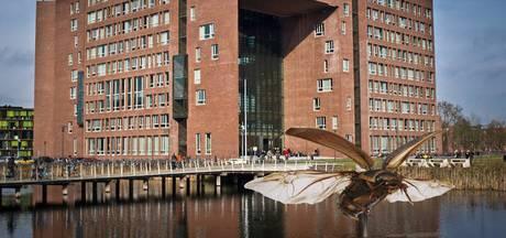 Reusachtige waterkever op de Wageningen Campus