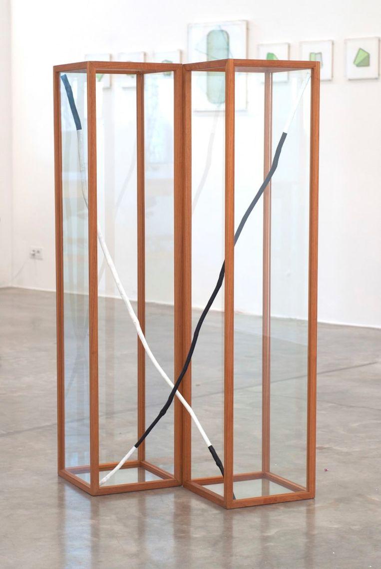Guy Rombouts - Ahobracus Capodacusbra (2019), DMW Gallery Beeld GalleryViewer
