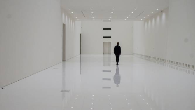 """IN BEELD. Werken Museum voor Schone Kunsten in laatste rechte lijn: """"Het gebouw is zo mooi dat men zich afvraagt waarom er nog kunst in moet"""""""