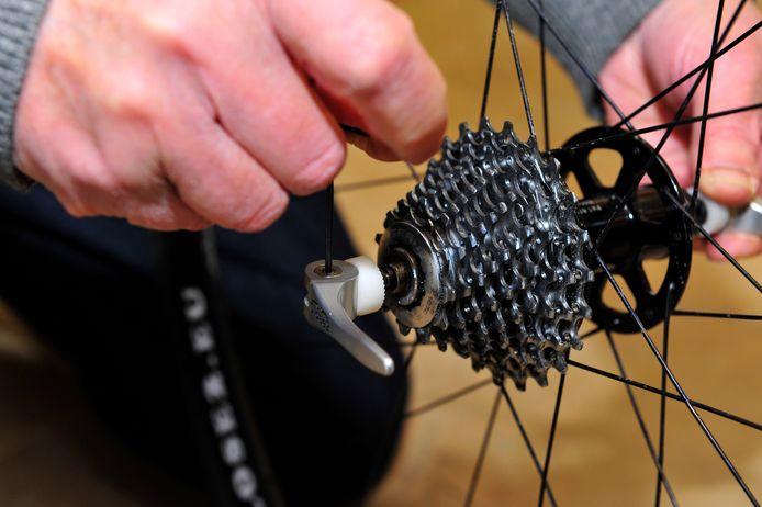 Veilig op de fiets in Evergem.