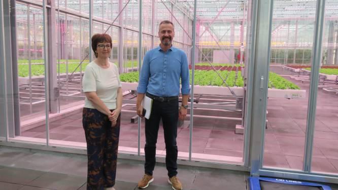 """""""Stuwende kracht voor innovatie in de sector"""": Agrotopia, grootste dakserre van Europa, geopend"""