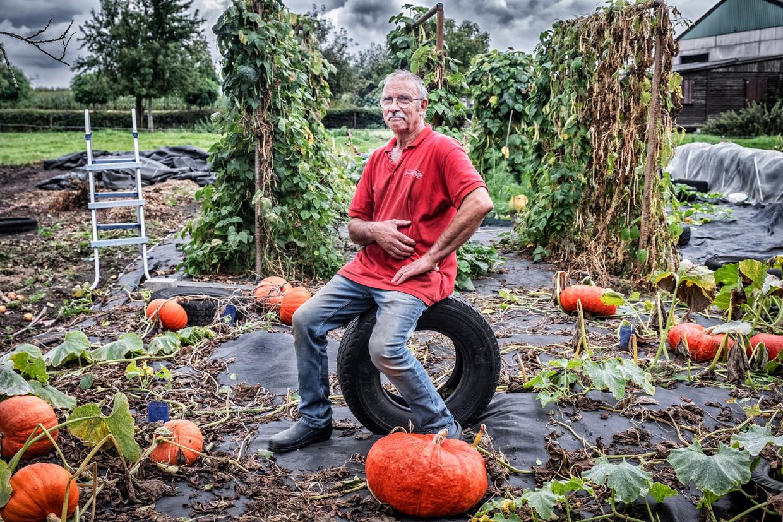 Edouard D'hollander in zijn moestuin: 'Mijn vrouw en ik eten nog van onze groenten, maar voor de kleinkinderen halen we groenten in de supermarkt.'  Beeld Tim Dirven
