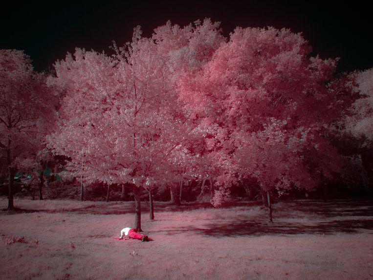 Uit de expositie van de foto's van Martin de Haan in Amsterdam. Serie 'Autun − un fil infrarouge', titel: 'Il n'y a pas le feu au lac'. Beeld Martin de Haan