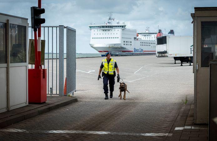 Een hondengeleider van de koninklijke marechaussee controleert vrachtwagens op eventuele verstekelingen, die via Hoek van Holland met de boot naar Harwich gaan. Op 26 februari vond een speurhond twee Albanezen in de vrachtwagen van Florin H.
