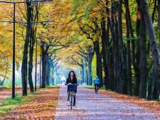 Rechtszaak tegen bouw brug Spottersweg in Eindhoven