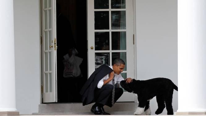 Obama's nemen na ruim tien jaar afscheid van trouwe viervoeter Bo