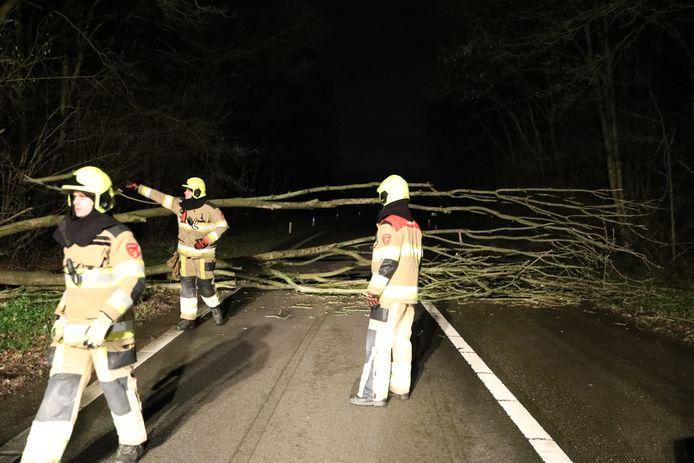 Brandweerlieden hebben de boom weggehaald