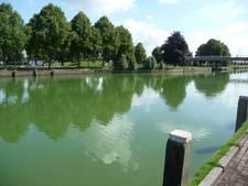 Blauwalgen in de stad: Bossche Waterweek voorziet nog geen problemen