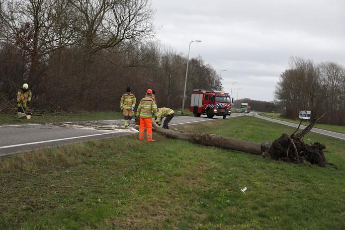 Een boom blokkeert een deel van de N377.