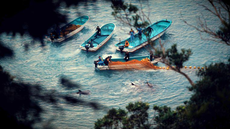 De kloof in Japan waar de walvissen massaal worden gedood. Beeld Netflix