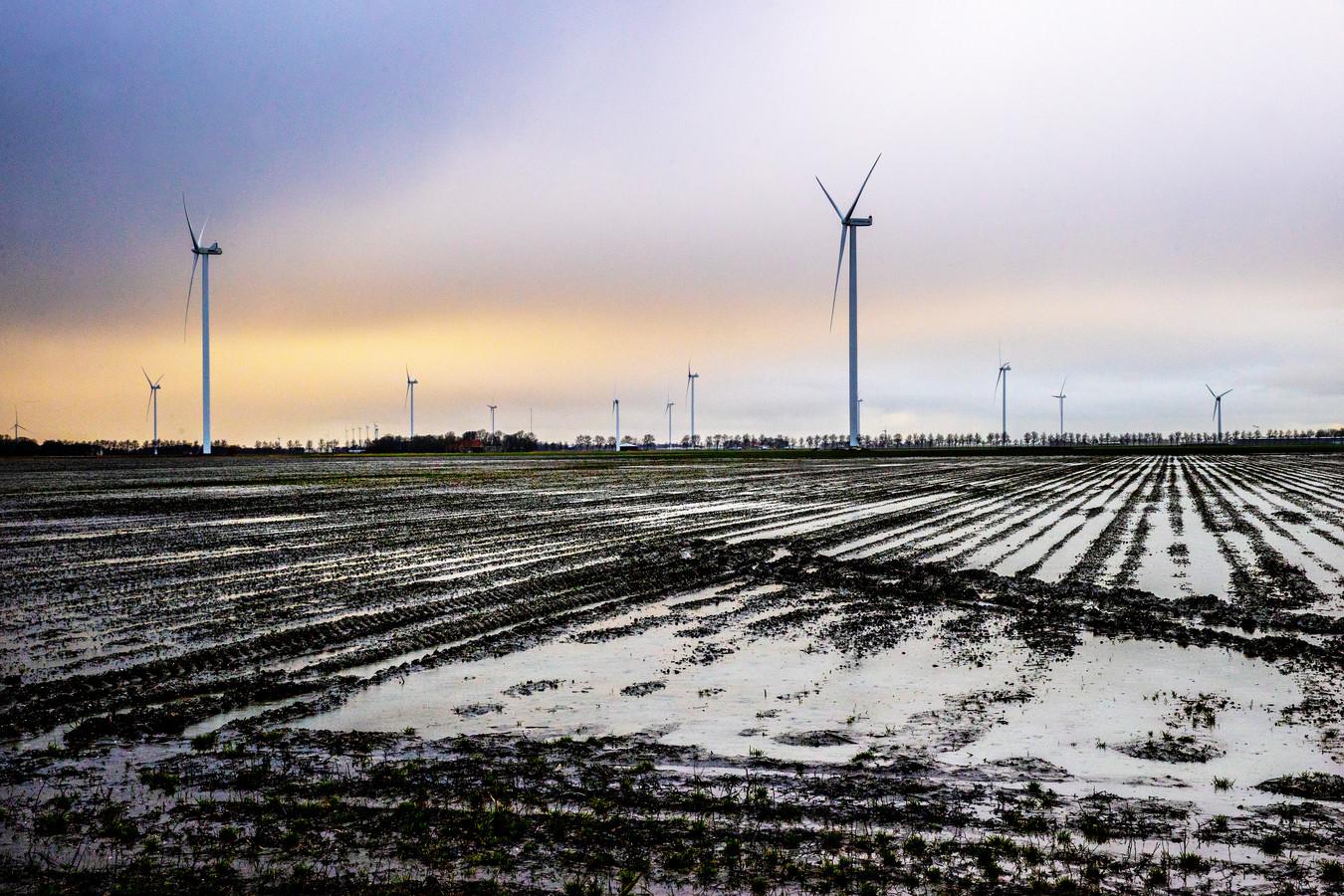 Molens in de Wieringermeer.