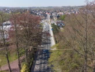 De eerste eekhoornbrug in de Vlaamse Ardennen hangt in Nederbrakel