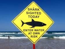 Haai neemt hap uit dertienjarige in Florida