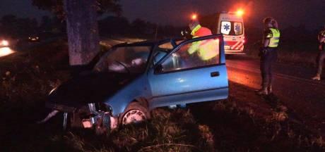 Automobiliste gewond na botsing tegen boom bij Winterswijk: motorblok uit auto gevlogen
