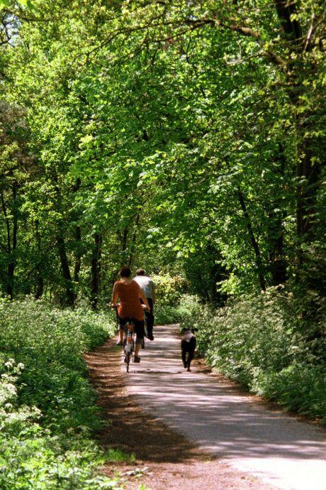 Stelling | Natuurgebieden, zoals de Veluwe, zouden nooit afgesloten mogen worden voor bezoekers