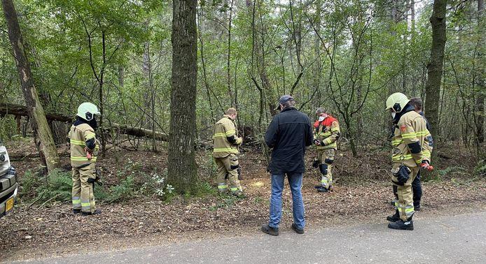 Brandweermensen zoeken bij de Bosweg in Loosbroek naar de verdwenen hond.