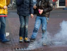 Acht groene gebieden in Zoetermeer zijn bij jaarwisseling vuurwerkvrij
