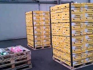 Kilo cocaïne uit haven van Antwerpen belandt bij voedselbank