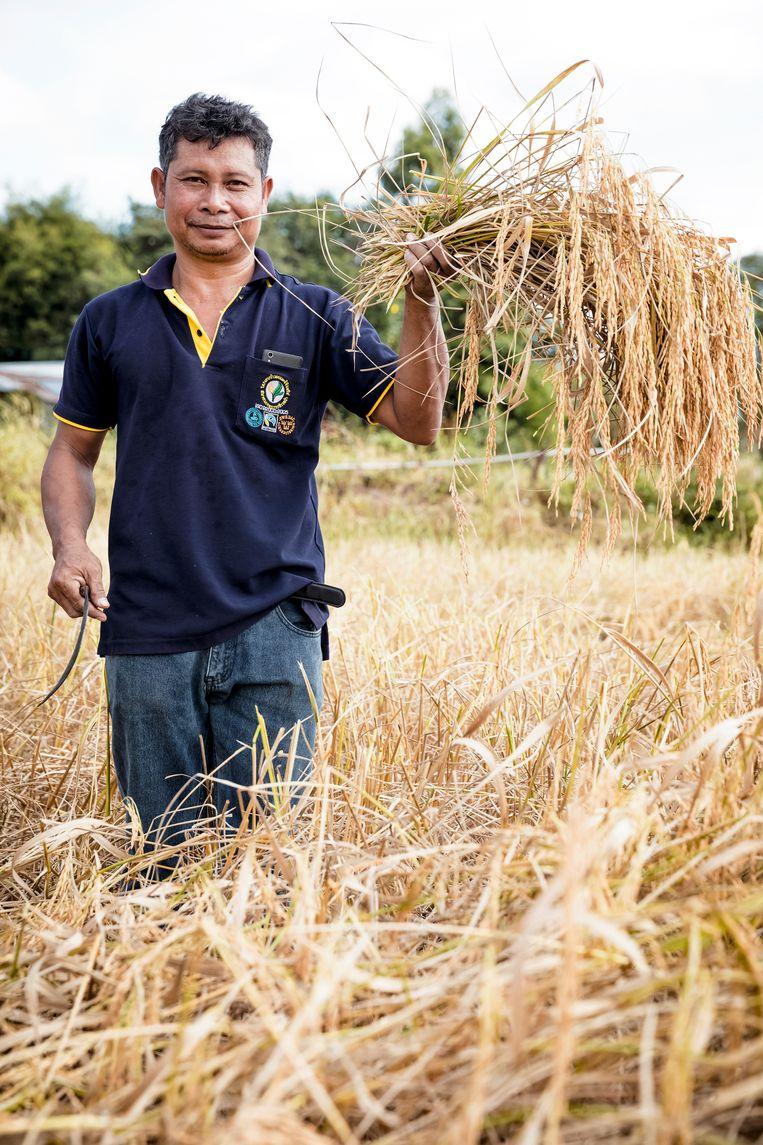 Fairtradeorganisaties lanceren nieuwe strategie om oogsten van boeren beter op afzetmarkten af te stemmen.  Beeld rv