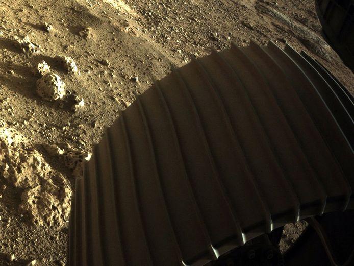 Wetenschappers zullen onder andere de stenen bestuderen die op deze foto te zien zijn.