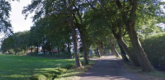 Een deel van de Oudeweg bij Hulshorst.