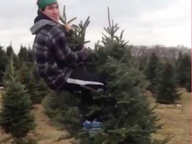 VIRAL3: in een kerstboom klimmen is geen goed idee.