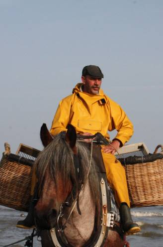 PORTRET. Johans hart stopte met kloppen, maar zijn paard liep verder en bracht z'n overleden baasje naar huis: paardenvisser sterft na vangst op zee