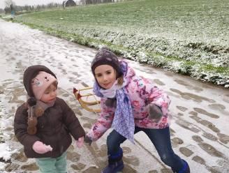 FOTOREEKS: Genieten van de sneeuw in Lede