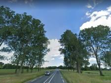 Zonnepark Heino wordt slecht 'verstopt' in het landschap: dorp krijgt koude grens
