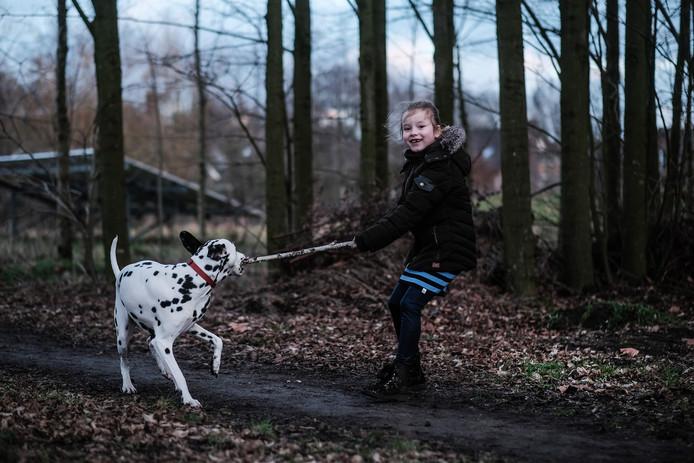 Jip met de loslopende dalmatiër Dolly in het solarpark in Hengelo.