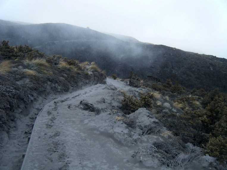 epa03346745 A handout photograph released by New Zealand Police showing  ash covering the ground after Mount Tongariro erupted overnight in Turangi, New Zealand, 07 August 2012. The volcano erupted  on 06 August 2012 spewing ash from the Te Maari craters on the northern side of the mountian.  EPA/NEW ZEALAND POLICE / HANDOUT AUSTRALIA AND NEW ZEALAND OUT HANDOUT EDITORIAL USE ONLY/NO SALES Beeld EPA