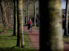 Dordrecht kapt 54 zieke bomen in Sterrenburg