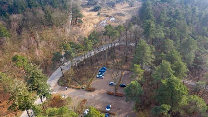 Betalen voor parkeren in Veluwse bossen? Beheerders willen kosten voor onderhoud 'eerlijker verdelen'