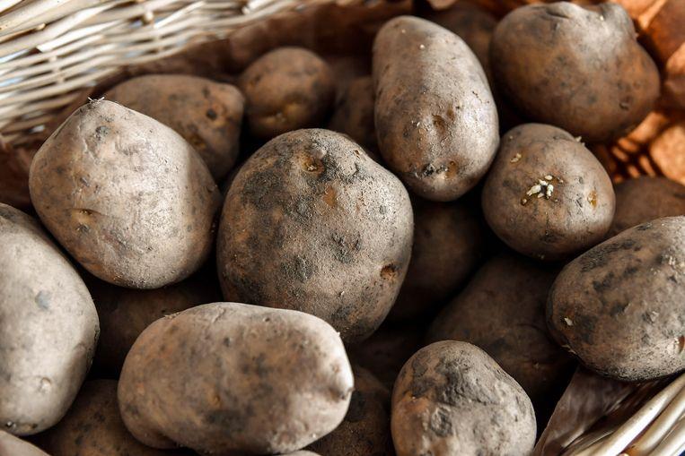 Ondersteunend beeld: aardappelen.