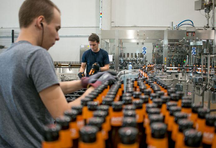 Werknemers van The Musketeers in Sint-Gillis-Waas. De brouwerij kent een stevige groei en plant dit najaar een uitbreiding.