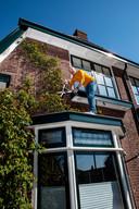 Roel van Dijk: 'Een klimplant zorgt ervoor dat de gevel minder warmte opneemt en afgeeft op hete dagen.'