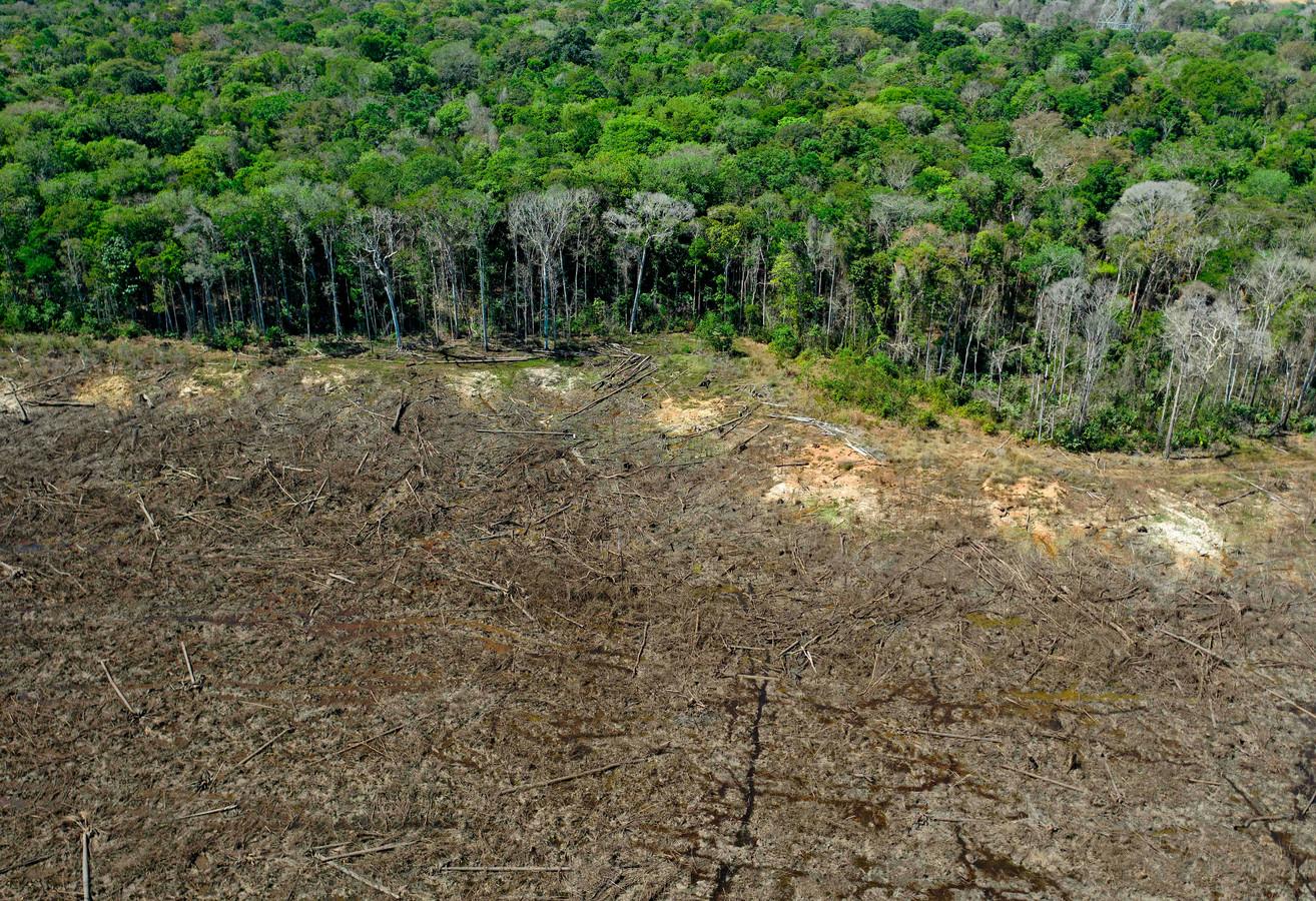 Cette photo d'archive prise le 07 août 2020 montre une vue aérienne d'une zone déboisée près de Sinop, dans l'État du Mato Grosso, au Brésil.