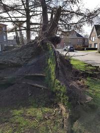 fotoreeks over Stormweer richt heel wat schade aan