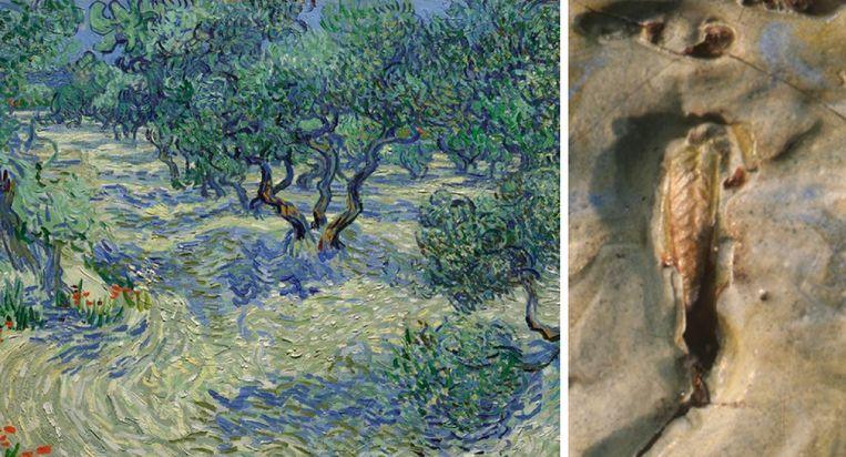 Al die tijd zat er een klein geheimpje verborgen in het meesterwerk. Beeld Nelson-Atkins Museum Instagram