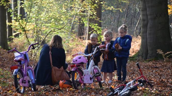 8 tips voor een herfstwandeling in Meetjesland en streek rond Deinze: van grootste bos van Oost-Vlaanderen tot het leven van Luc De Vos